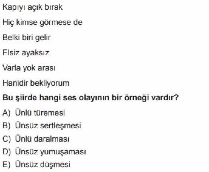 9.Sınıf Türk Dili ve Edebiyatı Test 3 Ses Bilgisi - Soru 11